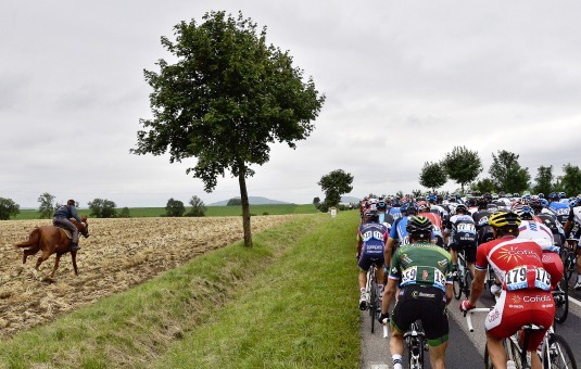 Horse racing, TDF style.